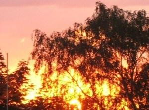Céu de Ouro